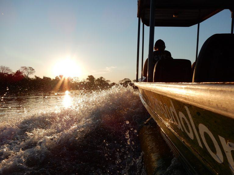 Br_Pantanal_026_klein